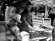 Питание военнослужащих Советского Союза и фашисткой Германии 1939 — 1945 годов